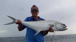 Tackle International Queen Fish