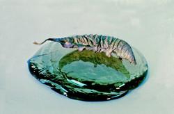 float leaf-w