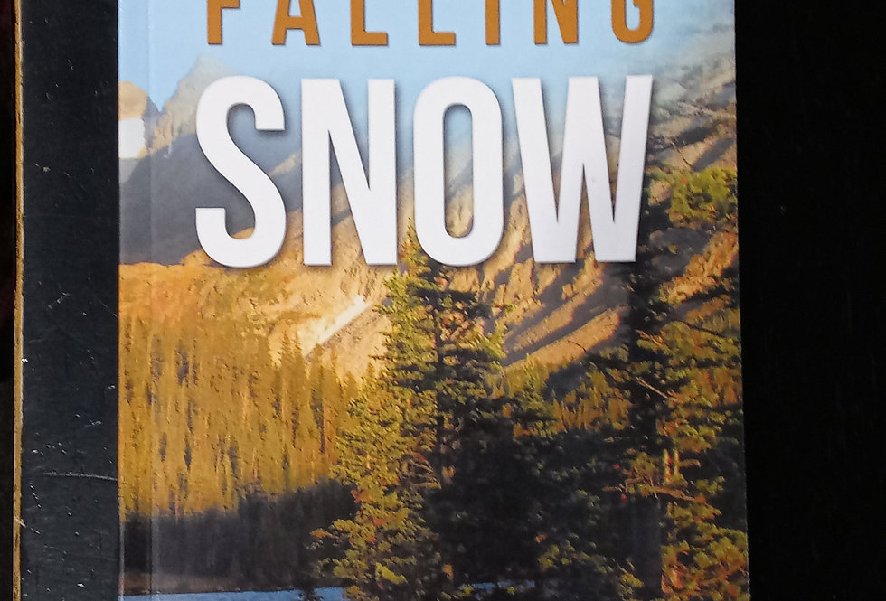 Falling Snow Poetry Book