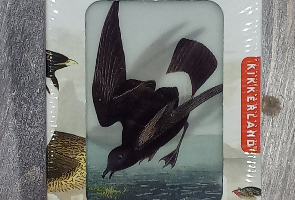 3-D Bird Cards