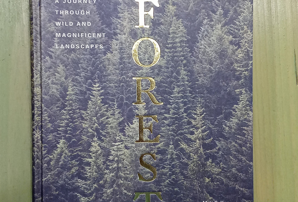 Forest - A Journey Through Wild and Magnificent Landscapes