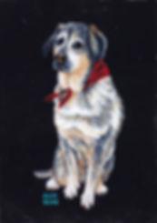 Julie Read Pet Portrait
