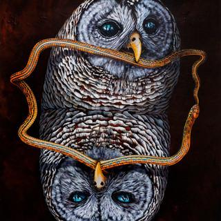 Owl Eats Ouroboros