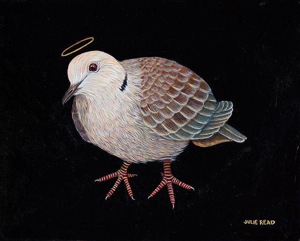 Julie Read bird painting dove