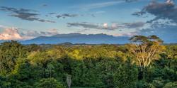Bosque Humedo Tropical