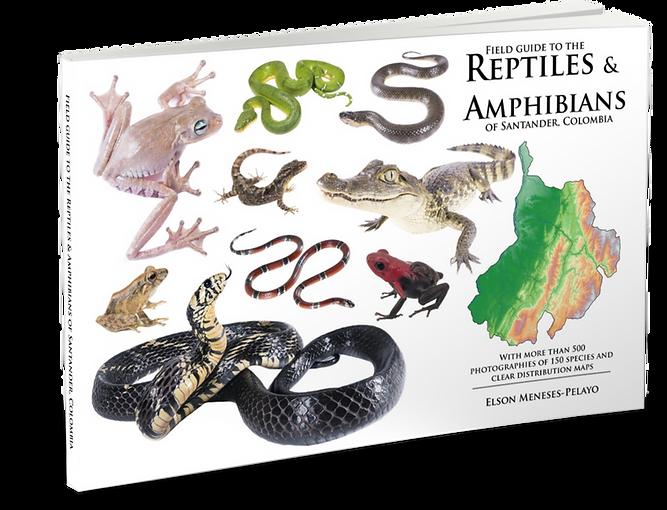 Anfibios y Reptiles de Santander
