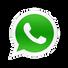 Whatsapp Diego Paiva