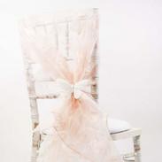 Organza Hood - Pale Pink.jpg