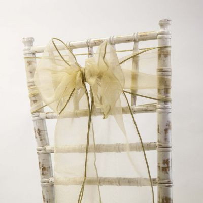 Organza Sash - Antique Gold.jpg
