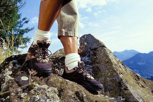 Gecko Rockclimber Drops