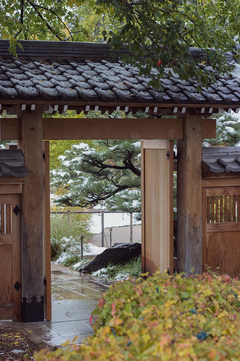 Japanese Snow Denver Botanic Gardens | Meghan Stark