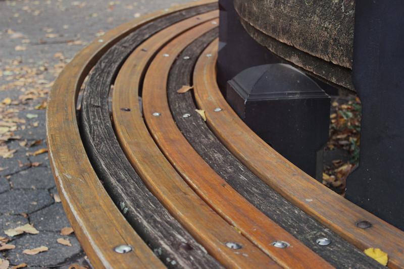 Central Park Bench | Meghan Stark