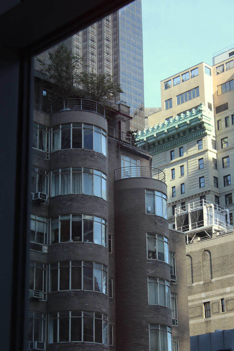MOMA Window | Meghan Stark