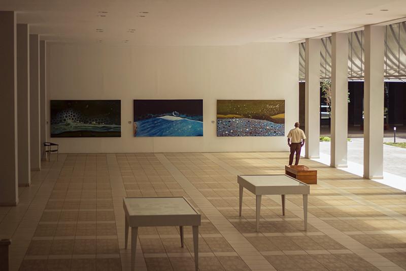 The National Museum of Fine Arts, Cuba - Meghan Stark