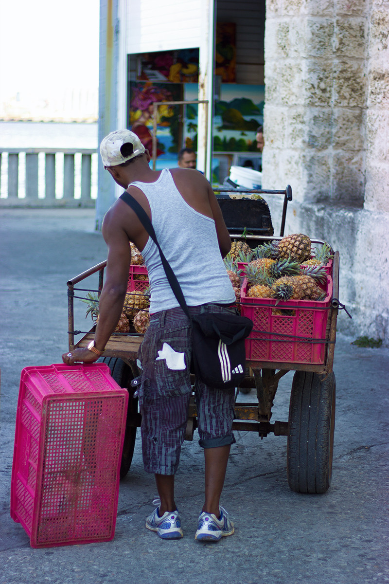 Pineapple Delivery - Meghan Stark