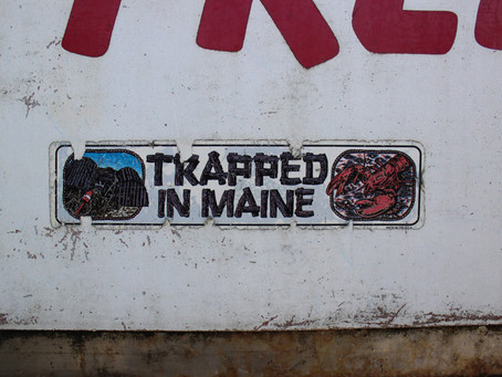 Maine is Rugged