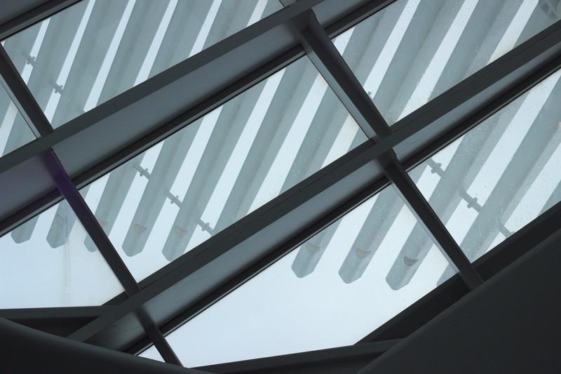 Wings Window | Meghan Stark