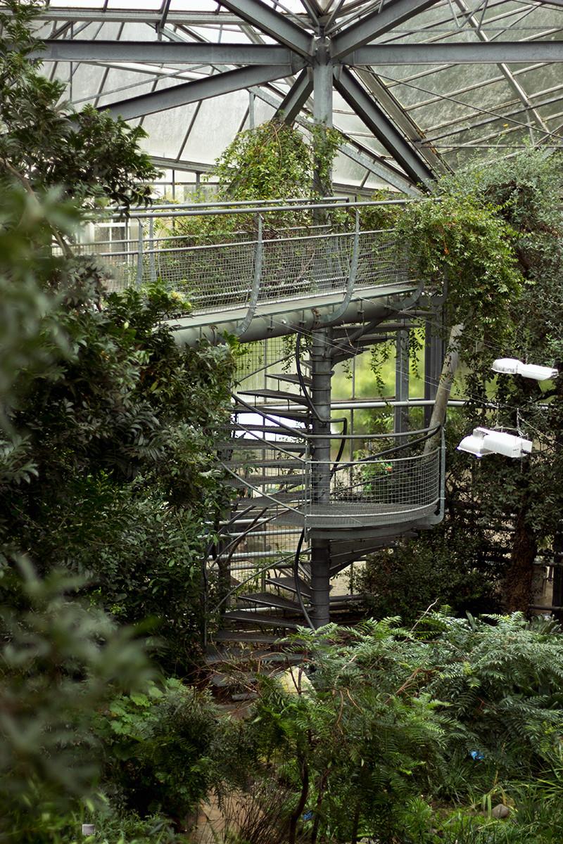 Botanic Spiral | Meghan Stark