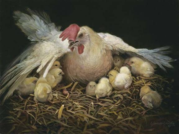 Yeshua the Hen