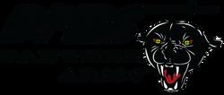 DPMS_Logo_4C.png