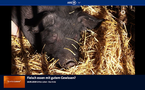 Fleisch_essen_mit_gutem_Gewissen.png
