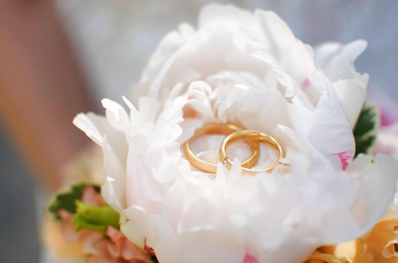 Hochzeitsfotografie_Romy_Linden_40.jpg
