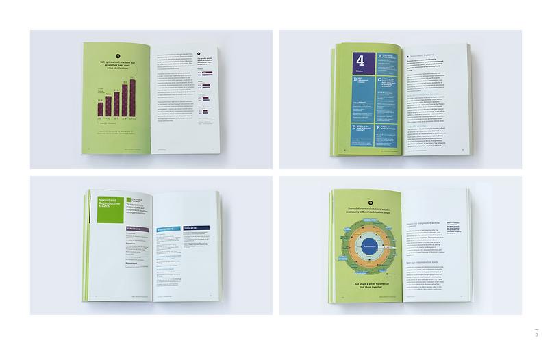 02-UNFPA_Handbook_01.png