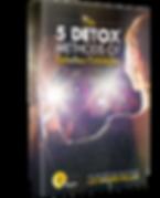 Red Teas Detox 5 detox methods e-book