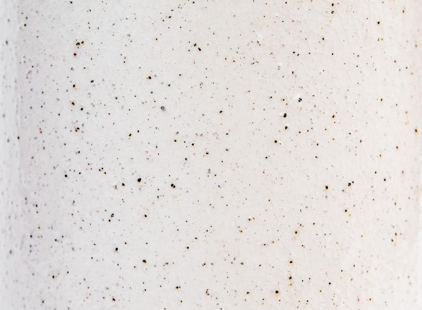 Glaze - Speckled White