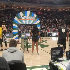 Milwaukee Bucks Basketball Plinko