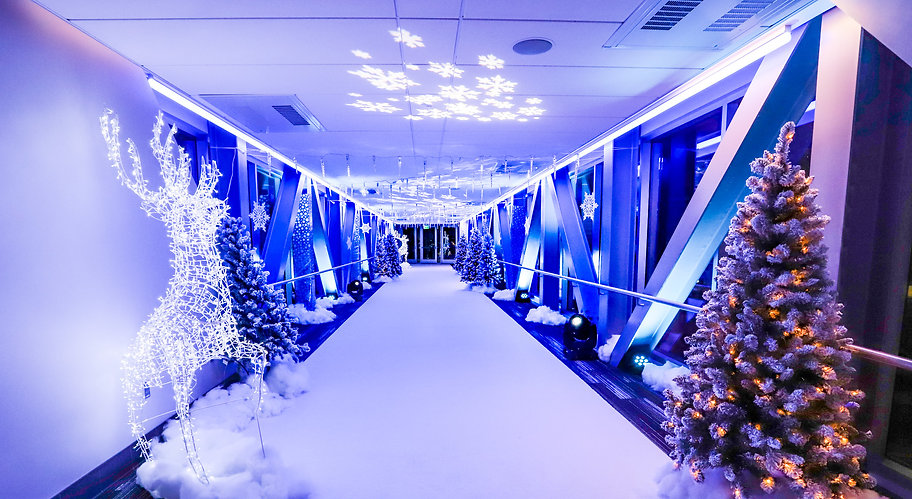 Themed Events Winter Wonderland.JPG
