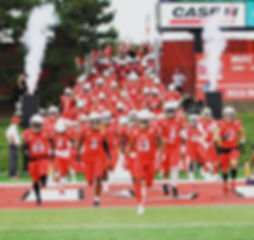 illinois state cryo towers football intros