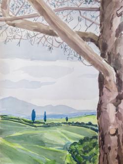 Collines siennoises printemps 1806