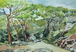Elba - trail 2
