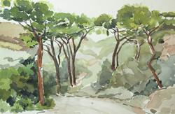 Elba - trail 3