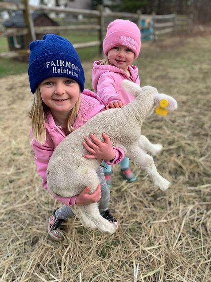 ella sophie lamb.JPG