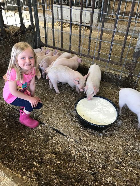 ella and pigs.jpeg