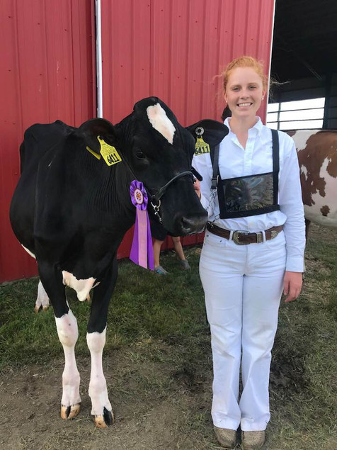 Isabel at State 4-H Show
