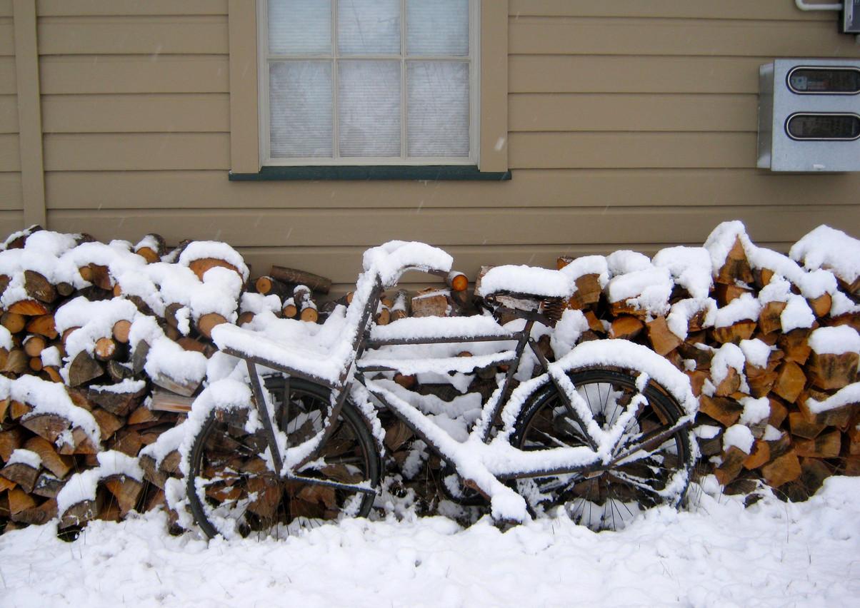Woodpile and dutch bike