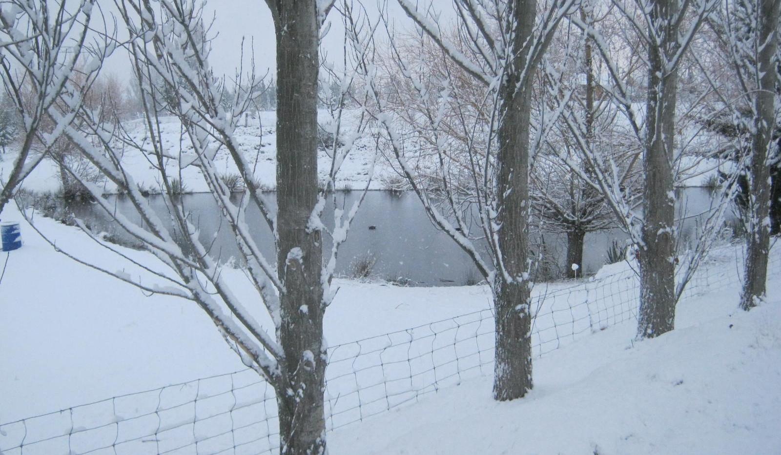 Irrigation dam in snow