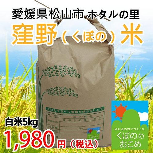 窪野米(白米5kg) ※30袋限定