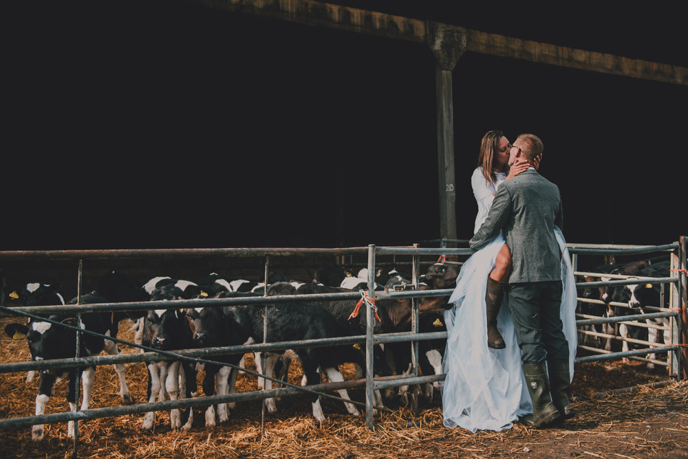 Woman on gate being kissed by man calf chewing wedding dress