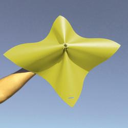 kite cover.jpg