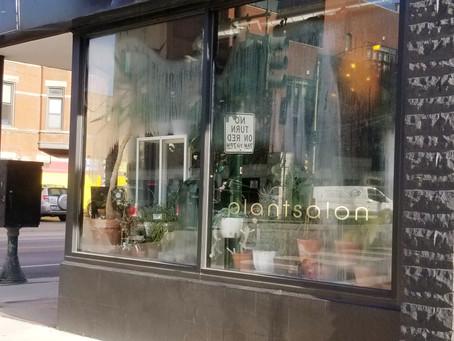 Plant Salon is a Black-owned Plant Paradise