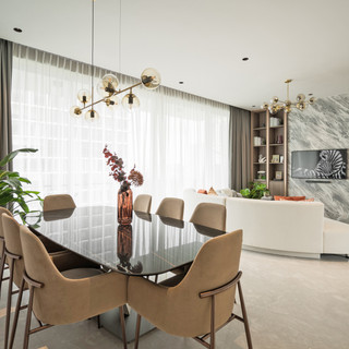 Ardmore Park _ Living & Dining Area