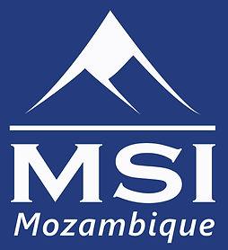 Logo_MSImoz_1.jpg