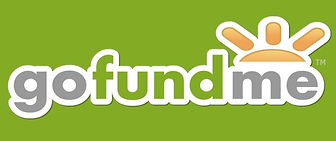 GoFundMe-Logo-730x306 (1).jpg