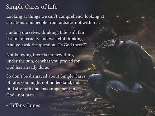 Simple Cares of Life 2