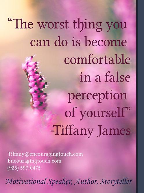 False Perceptions 1