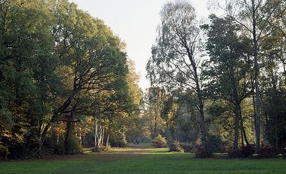 wood 9.jpg